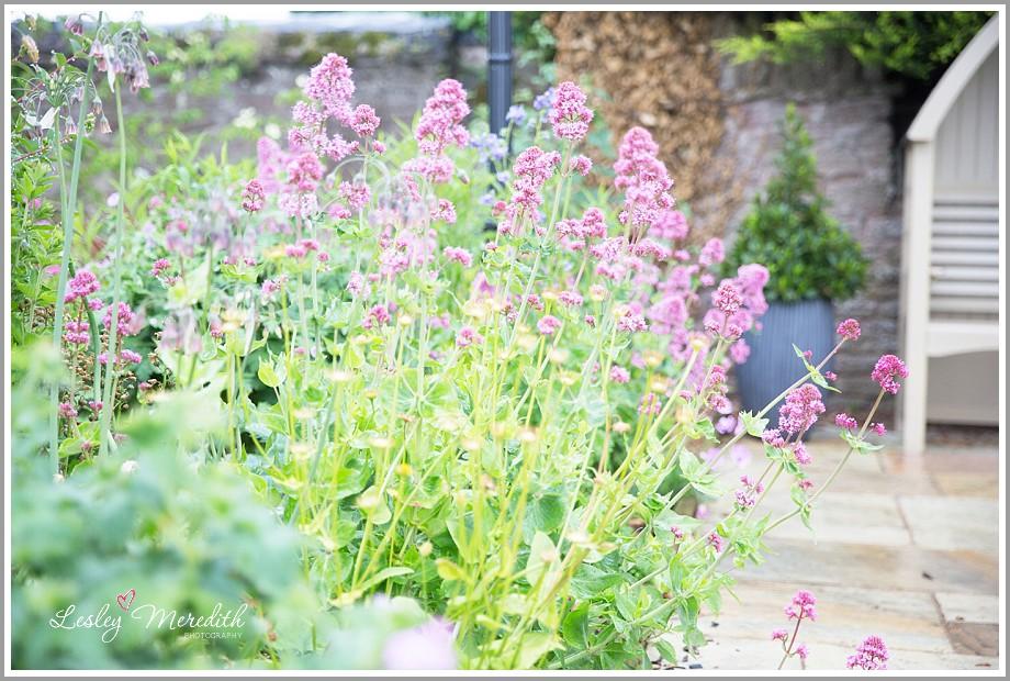 www.lesleymeredith.co.uk_1043