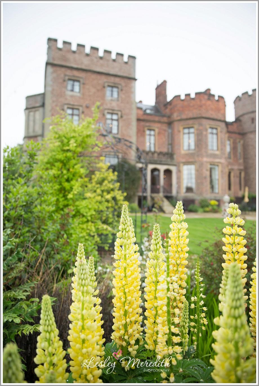 www.lesleymeredith.co.uk_1070