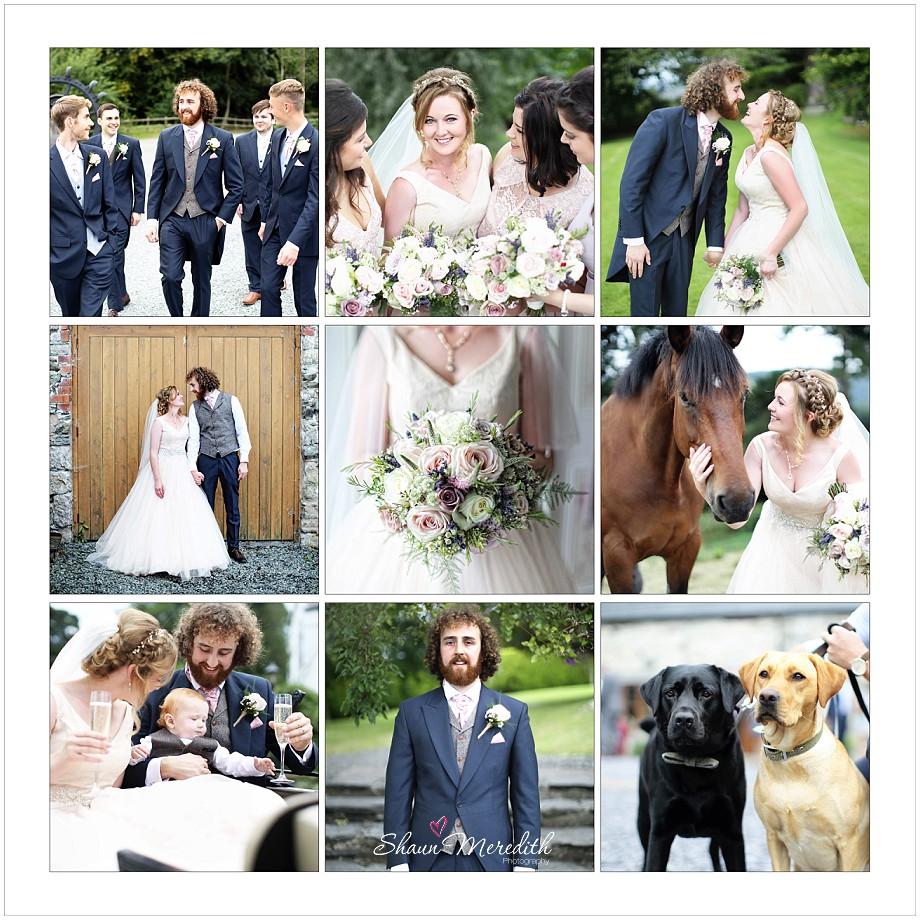 www.lesleymeredith.co.uk_4125